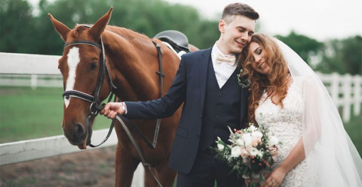 mariage equestre
